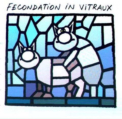 le chat - fécondation in vitraux