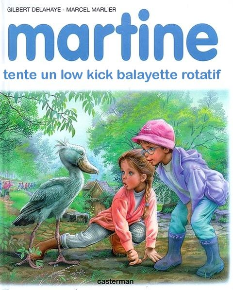 martine tente un low kick